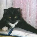 vico2004