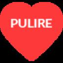 pulire-theme-2