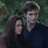 twilight-robsten-nonsten