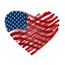 fortheloveofpatrioticamericana