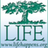 lifefoundation