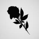 rosaeaux