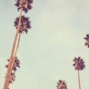 lastbadday-blog
