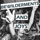 bewildermentsandjoys