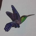 alma-de-colibri