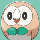 owlsoverseattle