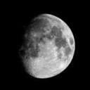 studyforthe-moon