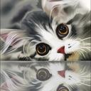 kittylittlelady42