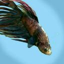 myfishers