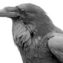 ravenrook9