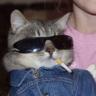 0kayla-kitten0