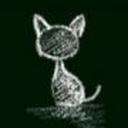 kittenscoffeenest