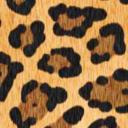 leopardroyale