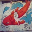 thekoifish