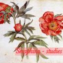 seraphina-studies-blog