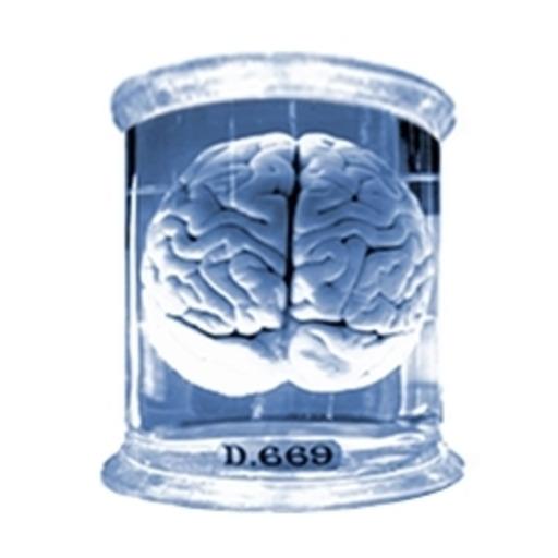 Inside the Brain — Let's explore the medulla oblongata