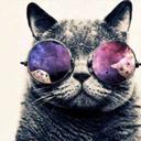 catsoverloaded