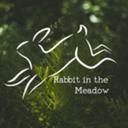 rabbitinthemeadow
