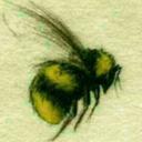 honeybeelullaby