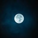 dark-moon-nights