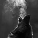howlsoftly