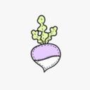 turnipco