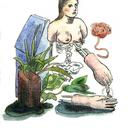 catnaps-illustration-blog