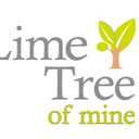 limetreevn-blog