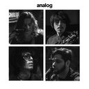 analogband