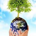 sociedade-economia-meioambi-blog