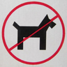 Dogs Where There Shouldn't Be Dogs Avatar