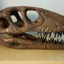 hazelvelociraptor
