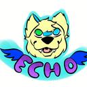 echo-chrysanthemum-blog