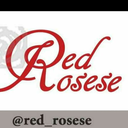 red-rosese