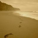 only-footprints-blog-blog