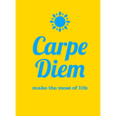 rememberthecarpediem-blog