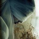 bila-awtan-blog