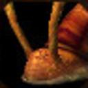 tenku-the-gastropod