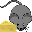 cheese-in-the-kitchen