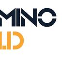 minoid