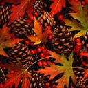 autumnball