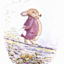 inspiredby-beatrixpotter: Peter Rabbit and Co