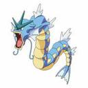 dragonfishdreams