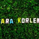 sarakorlen-blog