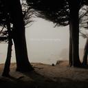 azihsphotography