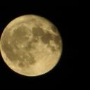 alys-moon