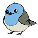 bluekomadori
