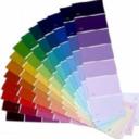 animalofadifferentcolor-blo-blog