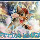 rrriot-kitty