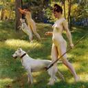 dogcoffeetravel-blog-blog